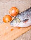 Ακατέργαστα ψάρια IDE σε έναν τεμαχίζοντας πίνακα Στοκ εικόνα με δικαίωμα ελεύθερης χρήσης