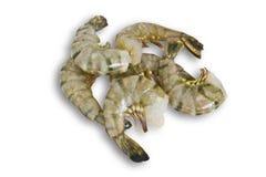 ακατέργαστες γαρίδες Στοκ Εικόνες