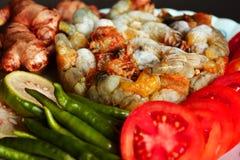 Ακατέργαστες γαρίδες στο πιάτο στοκ φωτογραφίες