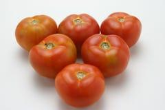 Ακατέργαστες κόκκινες ντομάτες Στοκ φωτογραφία με δικαίωμα ελεύθερης χρήσης