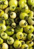 Ακατέργαστες πράσινες ντομάτες στο ξύλινο κιβώτιο Στοκ εικόνα με δικαίωμα ελεύθερης χρήσης