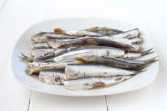 Ακατέργαστες σαρδέλλες στο πιάτο στο ξύλο Στοκ φωτογραφία με δικαίωμα ελεύθερης χρήσης