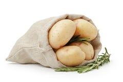Ακατέργαστες φρέσκες πατάτες με το δεντρολίβανο burlap στην τσάντα Στοκ εικόνες με δικαίωμα ελεύθερης χρήσης