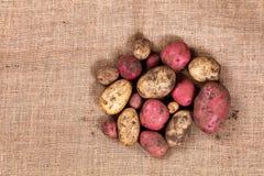 Ακατέργαστες uncleaned πατάτες burlap στο ύφασμα Στοκ εικόνες με δικαίωμα ελεύθερης χρήσης