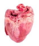 Ακατέργαστη καρδιά Στοκ εικόνες με δικαίωμα ελεύθερης χρήσης