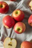 Ακατέργαστη κόκκινη οργανική ρόδινη κυρία Apples Στοκ φωτογραφίες με δικαίωμα ελεύθερης χρήσης