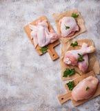 Ακατέργαστη λωρίδα, μηρός, φτερά και πόδια κρέατος κοτόπουλου Στοκ Εικόνα