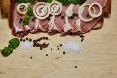 Ακατέργαστη μπριζόλα με μια σαλάτα και ένα καρύκευμα στοκ εικόνες