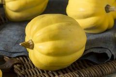 Ακατέργαστη οργανική άσπρη κίτρινη κολοκύνθη βελανιδιών Στοκ Εικόνα