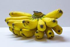 Ακατέργαστη οργανική δέσμη των μπανανών σκοτεινά σημεία στοκ εικόνες