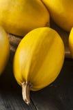 Ακατέργαστη οργανική κίτρινη κολοκύνθη μακαρονιών Στοκ Φωτογραφία