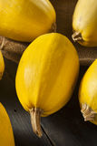 Ακατέργαστη οργανική κίτρινη κολοκύνθη μακαρονιών Στοκ Εικόνες