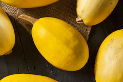 Ακατέργαστη οργανική κίτρινη κολοκύνθη μακαρονιών Στοκ Εικόνα
