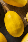 Ακατέργαστη οργανική κίτρινη κολοκύνθη μακαρονιών Στοκ εικόνα με δικαίωμα ελεύθερης χρήσης