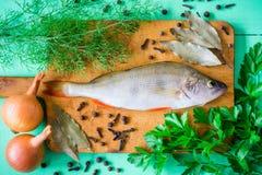 Ακατέργαστη πέρκα στον αγροτικό τέμνοντα πίνακα με τα φρέσκα χορτάρια, τα λαχανικά και τα καρυκεύματα στον πράσινο ξύλινο πίνακα Στοκ εικόνα με δικαίωμα ελεύθερης χρήσης