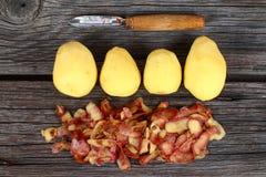 Ακατέργαστη πατάτα εν πλω Στοκ Εικόνες