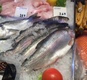 ακατέργαστη πώληση ψαριών στοκ εικόνες