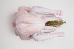 Ακατέργαστη Τουρκία, ημέρα των ευχαριστιών, γεύμα Χριστουγέννων, προετοιμασία Στοκ Εικόνες