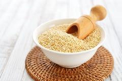 Ακατέργαστοι quinoa σπόροι Στοκ Εικόνες