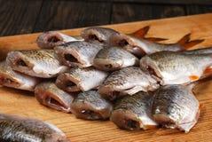 Ακατέργαστος λίγο ψάρι Στοκ Φωτογραφίες