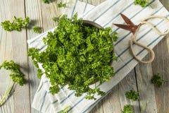 Ακατέργαστος πράσινος οργανικός σγουρός μαϊντανός Στοκ φωτογραφία με δικαίωμα ελεύθερης χρήσης