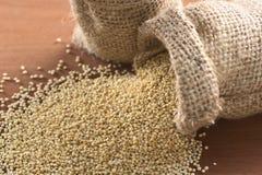 Ακατέργαστο άσπρο Quinoa Στοκ Φωτογραφία