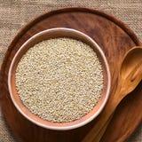 Ακατέργαστο άσπρο Quinoa Στοκ φωτογραφίες με δικαίωμα ελεύθερης χρήσης
