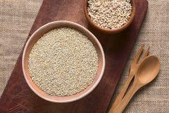 Ακατέργαστο άσπρο Quinoa Στοκ Εικόνες