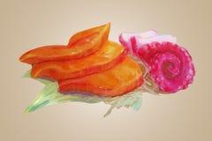 Ακατέργαστο διάνυσμα σολομών και tako Watercolor Στοκ φωτογραφία με δικαίωμα ελεύθερης χρήσης