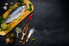 Ακατέργαστο διάστημα ψαριών και αντιγράφων πεστροφών Στοκ Εικόνες