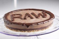 Ακατέργαστο κέικ Στοκ εικόνες με δικαίωμα ελεύθερης χρήσης