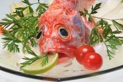 Ακατέργαστο κεφάλι ψαριών των Red Snapper Στοκ εικόνα με δικαίωμα ελεύθερης χρήσης
