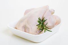 Ακατέργαστο κοτόπουλο Στοκ Εικόνες