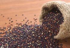 Ακατέργαστο κόκκινο Quinoa Στοκ φωτογραφία με δικαίωμα ελεύθερης χρήσης