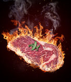Ακατέργαστο κόντρα φιλέτο βόειου κρέατος ασφαλίστρου Στοκ εικόνα με δικαίωμα ελεύθερης χρήσης