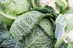 Ακατέργαστο λάχανο κραμπολάχανου στην αγορά Στοκ Εικόνες