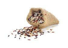 Ακατέργαστο οργανικό καφετί ρύζι Στοκ Εικόνες