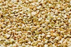 Ακατέργαστο πράσινο υπόβαθρο φαγόπυρου, οργανικά vegan τρόφιμα σύσταση στοκ φωτογραφία
