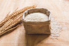 Ακατέργαστο σιτάρι ρυζιού και ξηρό φυτό ρυζιού στο ξύλινο επιτραπέζιο υπόβαθρο Στοκ φωτογραφία με δικαίωμα ελεύθερης χρήσης