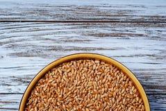 Ακατέργαστο σιτάρι σε ένα πιάτο στοκ φωτογραφίες