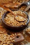 Ακατέργαστο σιτάρι Kamut σε ένα ξύλινο κύπελλο στοκ φωτογραφία