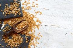 Ακατέργαστο σιτάρι Kamut στοκ εικόνα