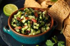 Ακατέργαστο σπιτικό Cucumber Pico de Gallo Salsa στοκ εικόνα με δικαίωμα ελεύθερης χρήσης