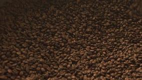 Ακατέργαστο φασόλι καφέ που αναμιγνύει τη συσκευή στην εργασία φιλμ μικρού μήκους