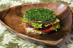 Ακατέργαστο burger τροφίμων Στοκ φωτογραφία με δικαίωμα ελεύθερης χρήσης