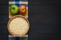 Ακατέργαστο Oatmeal με τα μήλα Στοκ φωτογραφία με δικαίωμα ελεύθερης χρήσης