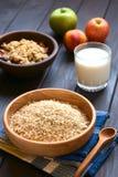 Ακατέργαστο Oatmeal Στοκ Εικόνες