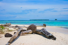 Ακατοίκητα μακρινά τροπικά νησιά Στοκ φωτογραφία με δικαίωμα ελεύθερης χρήσης
