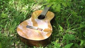 Ακουστική κιθάρα στα ξύλα Στοκ Εικόνες