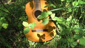 Ακουστική κιθάρα στα ξύλα Στοκ φωτογραφία με δικαίωμα ελεύθερης χρήσης